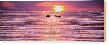 Swans On The Lake Wood Print by Jon Neidert