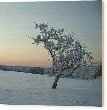 Swedish Winter Wood Print by Carola Ann-Margret Forsberg