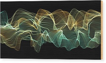 Sweeping Fractal 2 Wood Print by Dan Gries