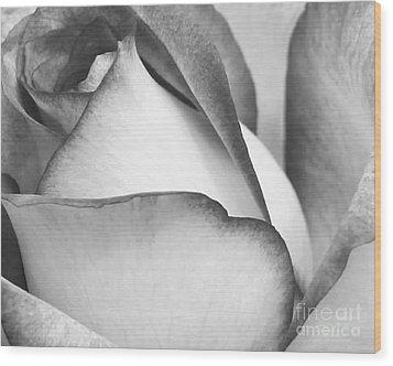 Sweet Black And White Rose  Wood Print by Sabrina L Ryan