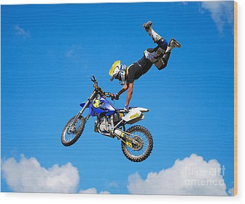 Sweet Jump Wood Print