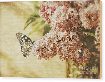 Sweet Lilacs Wood Print by Lois Bryan