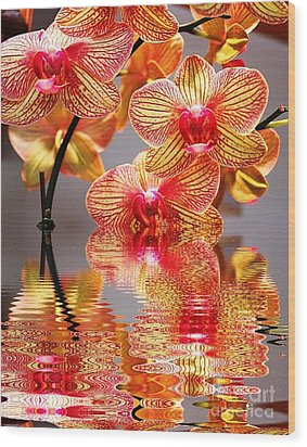 Sweet Orchid Reflection Wood Print by Judy Palkimas