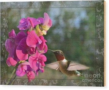 Sweet Pea Hummingbird IIi Wood Print by Debbie Portwood