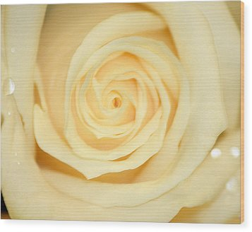 Wood Print featuring the photograph Sweet Pearl by The Art Of Marilyn Ridoutt-Greene