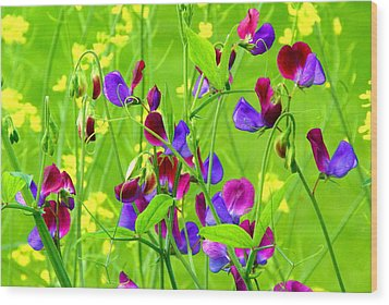 Wood Print featuring the photograph Sweet Peas by Byron Varvarigos