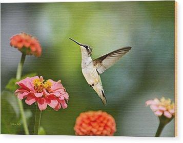 Sweet Promise Hummingbird Wood Print by Christina Rollo