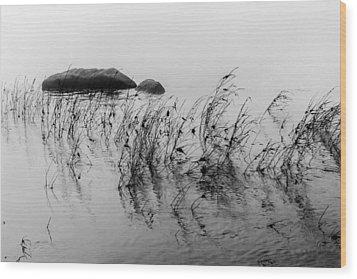 Sweet Water Wood Print by Edgar Laureano