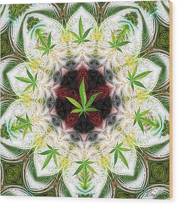 Sweetleaf Mandala Wood Print