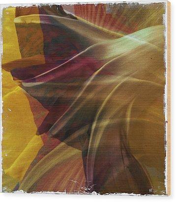 Swept Wood Print by Dorian Hill