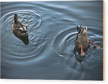 Swim And Take The Plunge Wood Print by Allan Millora