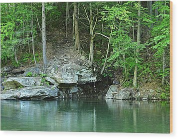 Swimming Hole At Rock Run Wood Print