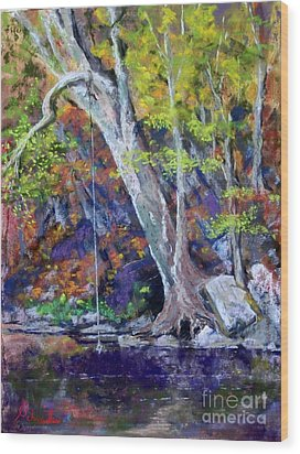 Swimming Hole Wood Print by Bruce Schrader