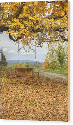 Swing With A View Wood Print