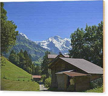 Swiss Hike Wood Print by Marty  Cobcroft