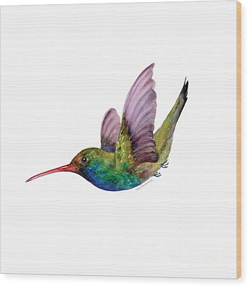 Swooping Broad Billed Hummingbird Wood Print