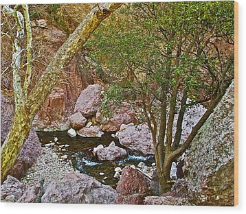 Sycamore And Cottonwood In Whitewater Catwalk National Recreation Trail Near Glenwood-new Mexico  Wood Print by Ruth Hager