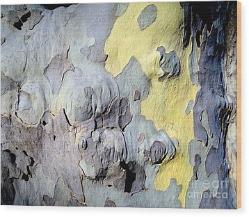 Sycamore Camouflage Wood Print