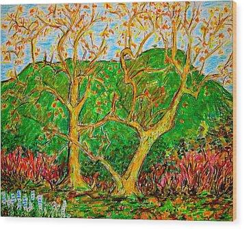 Sycamores Cahuenga Peak Wood Print