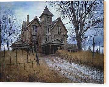 Sydenham Manor Wood Print by Tom Straub