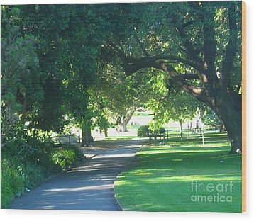 Wood Print featuring the photograph Sydney Botanical Gardens Walk by Leanne Seymour