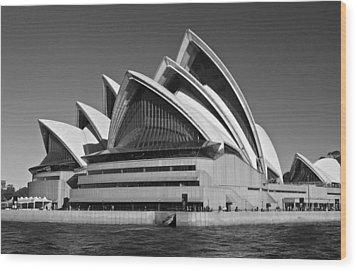 Sydney Opera House Wood Print by Venetia Featherstone-Witty