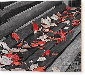 Sylva Bench 2003 Wood Print
