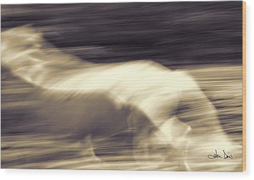Wood Print featuring the photograph Synchronicity by Joan Davis
