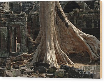 Ta Prohm Cambodia Wood Print by Bob Christopher
