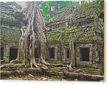 Ta Prohm Temple Ruins Wood Print by Dennis Cox WorldViews