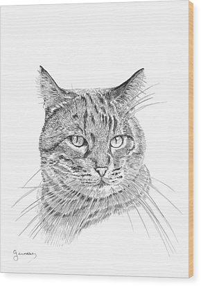 Tabby Wood Print