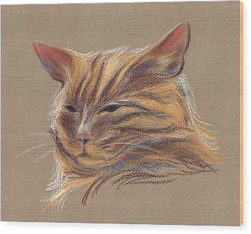 Wood Print featuring the pastel Tabby Cat Portrait In Pastels by MM Anderson