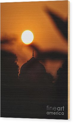 Taj Mahal- Agra India Wood Print by Vineesh Edakkara