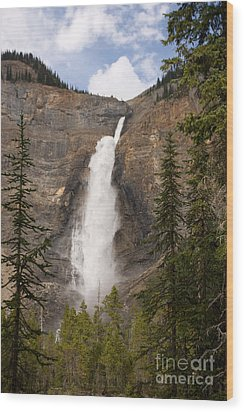 Wood Print featuring the photograph Takakkaw Falls by Chris Scroggins