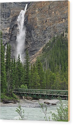 Takakkaw Falls Wood Print by Lisa Phillips