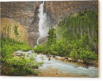 Takakkaw Falls Waterfall In Yoho National Park Canada Wood Print by Elena Elisseeva