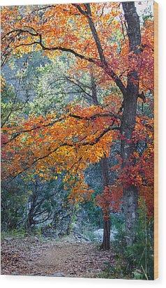 Take A Bough Wood Print