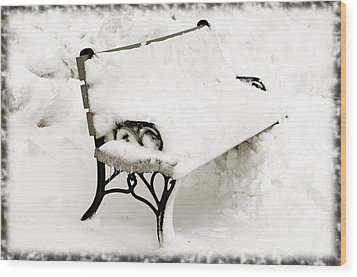 Take A Seat  And Chill Out - Park Bench - Winter - Snow Storm Bw Wood Print by Andee Design