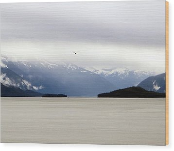 Wood Print featuring the photograph Take Flight by Jennifer Wheatley Wolf