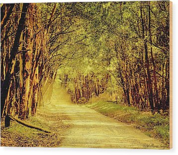 Take Me Home Wood Print by Wallaroo Images