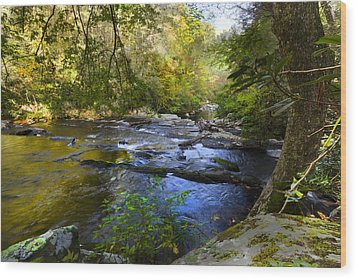 Take Me To The River Wood Print by Debra and Dave Vanderlaan