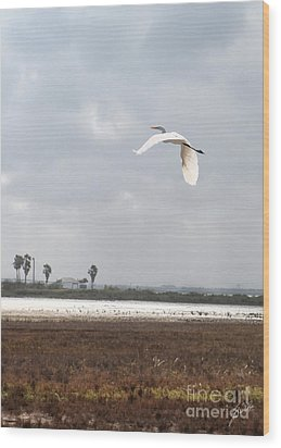 Wood Print featuring the photograph Take Off by Erika Weber