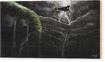 Take-off Wood Print by Sasank Gopinathan