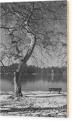 Wood Print featuring the photograph Take Your Time  by Juergen Klust