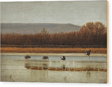 Takeoff Of The Cranes Wood Print by Priscilla Burgers