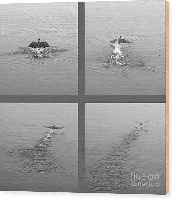 Takeoff Wood Print by Randi Grace Nilsberg