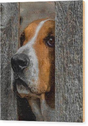 Taking A Look Around Wood Print by Ernie Echols