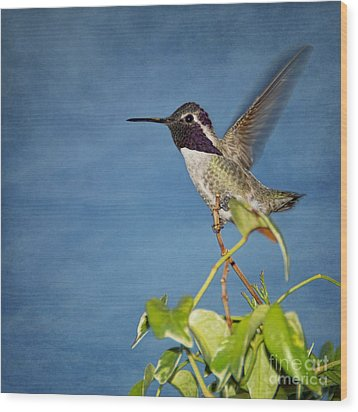 Wood Print featuring the photograph Taking Flight by Peggy Hughes
