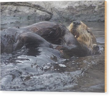 Wood Print featuring the photograph Taking It Easy by Christine Drake