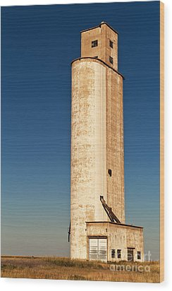 Wood Print featuring the photograph Tall Grain Elevator by Sue Smith